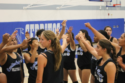 Volleyball ready to 'spike' for conference