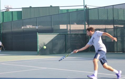 Falcons Tennis finish season as expected