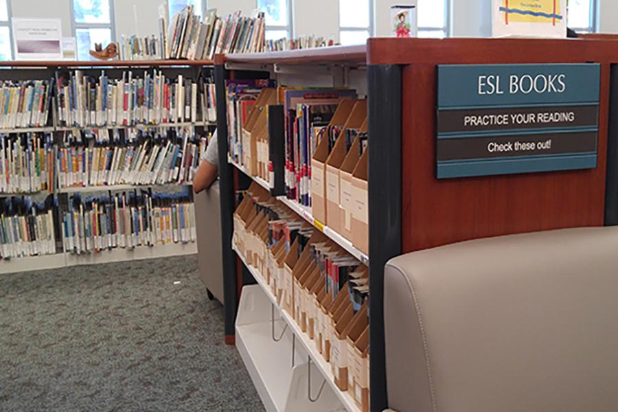 Library club helping ESL students