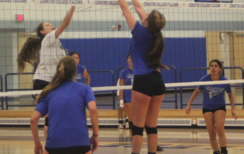 Sophomore Chelsea James gets into position to pounce the ball back into the opposing offense during practice.