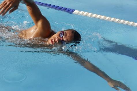 2015 Season Preview: Men's Swimming and Diving