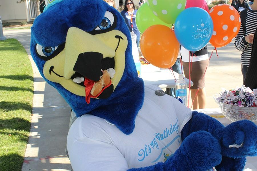Franco Falcon with a toy in his mouth. The mascots birthday celebration took place on Thursday, Feb. 4. Photo credit: Janel Oliver
