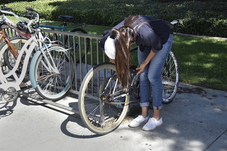 Computer+engineering+major+Jaqueline+Alejos+locking+her+bicycle+using+two+locks.+She+recommends+using+two+locks+that+are+not+easy+to+cut+with+wire+cutters+like+a+motorcycle+type+lock+with+a+thick+metal+chain+and+a+%E2%80%98U%E2%80%99+type+lock.+Photo+credit%3A+Perla+Lara