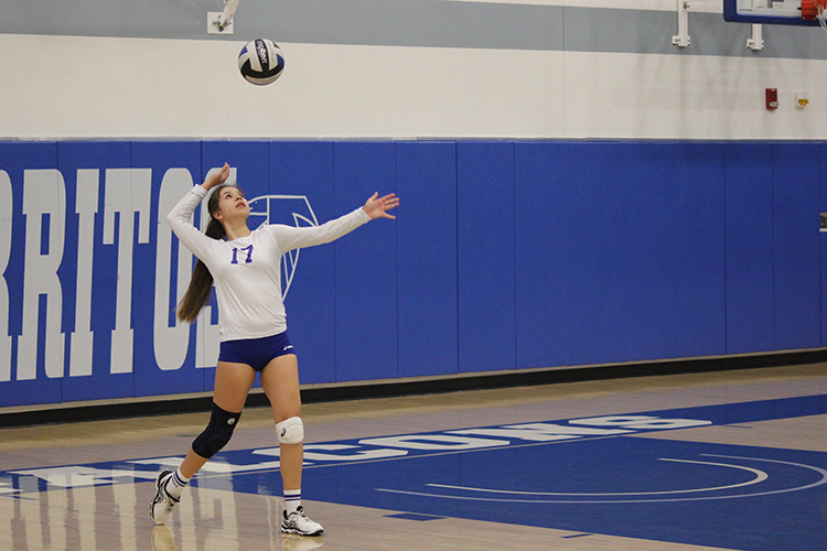 Outside hitter Monica Vega gets ready to serve the ball in the season finale game against LA Harbor College. For Vega and seven other sophomores, it was the last game in a Cerritos Falcon uniform.