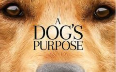 A Dog's Purpose is an instant dog lover classic