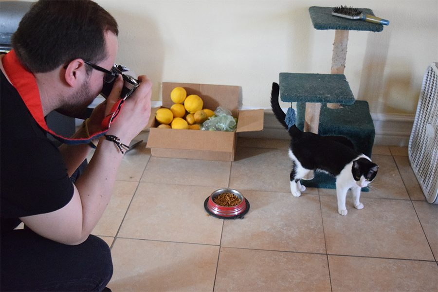 Addison Favela, engineer major, attempts to take the best possible shot he can of the cat, as he enjoys one of his favorite past times: photography. Favela is also a United States Marine Corps veteran who spent nearly five years with the military branch. Photo credit: Marck Parra