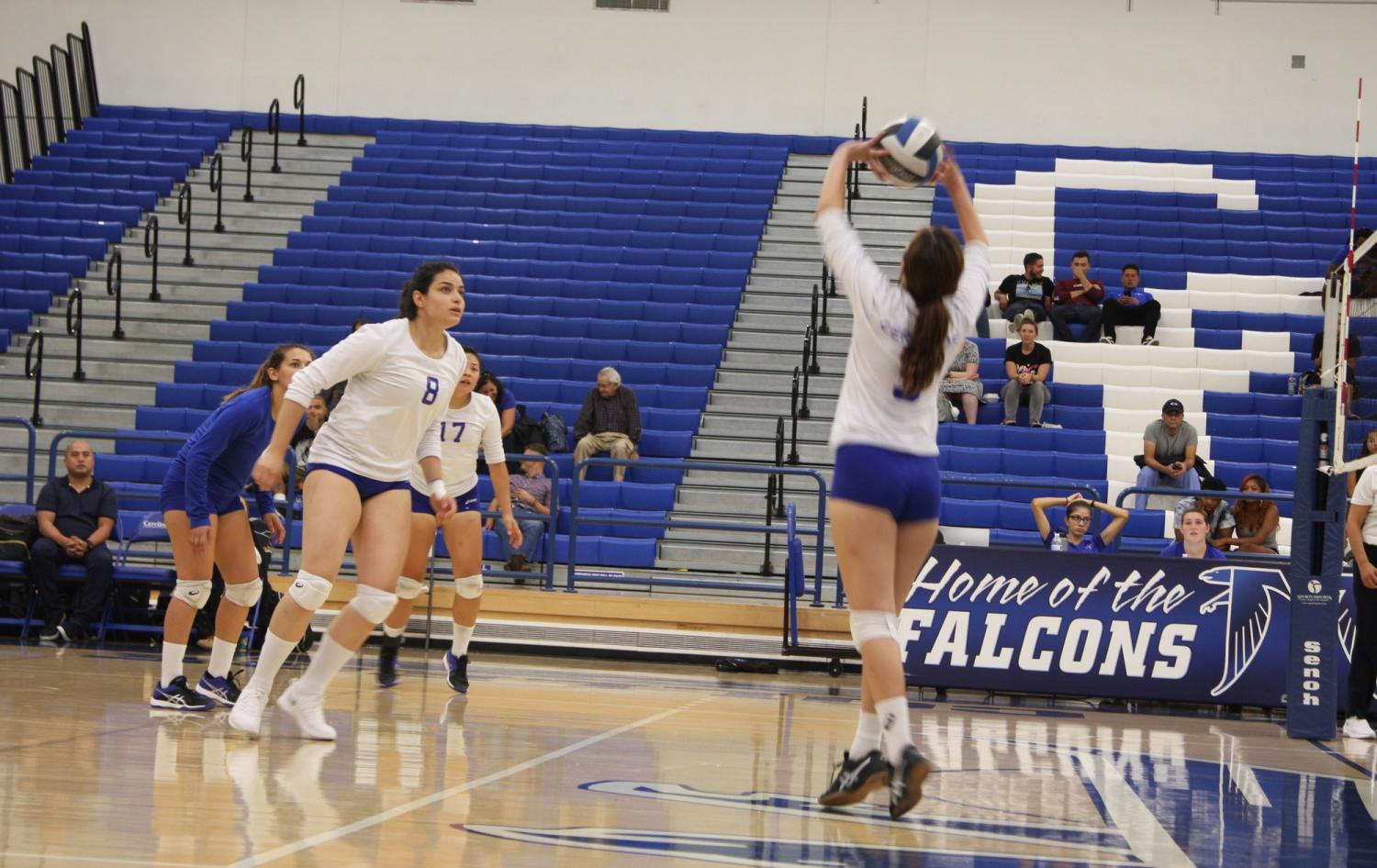 No. 5 Sabrina Rivas setting up for her team mate to spike the ball.  The Falcons lost 3-1 at home, make their season record 0-11. Photo credit: David Jenkins