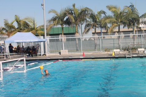 Women's water polo defeats LA Trade Tech