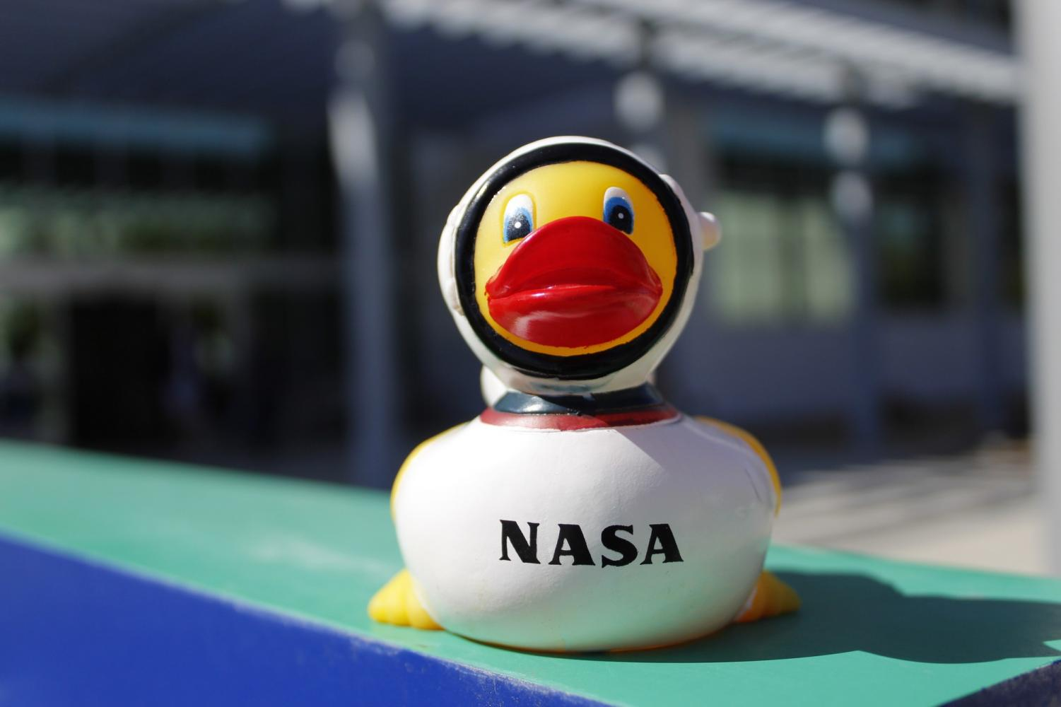 One of the many NASA ducks Yulisa Jimenez hopes to collect in the coming years.