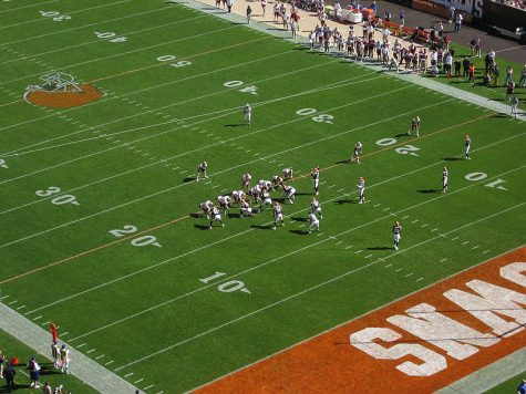 Browns field.jpeg