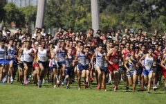 The Cerritos College men's cross country team brought in 259 team points by the end of the race. The Falcons came in eighth place in the Southern California Preview meet against 27 other community colleges on Sept. 14 at Don Knabe Community Regional Park.