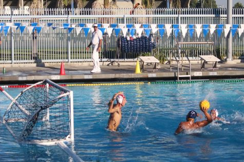 Men's Water Polo swimming towards post season