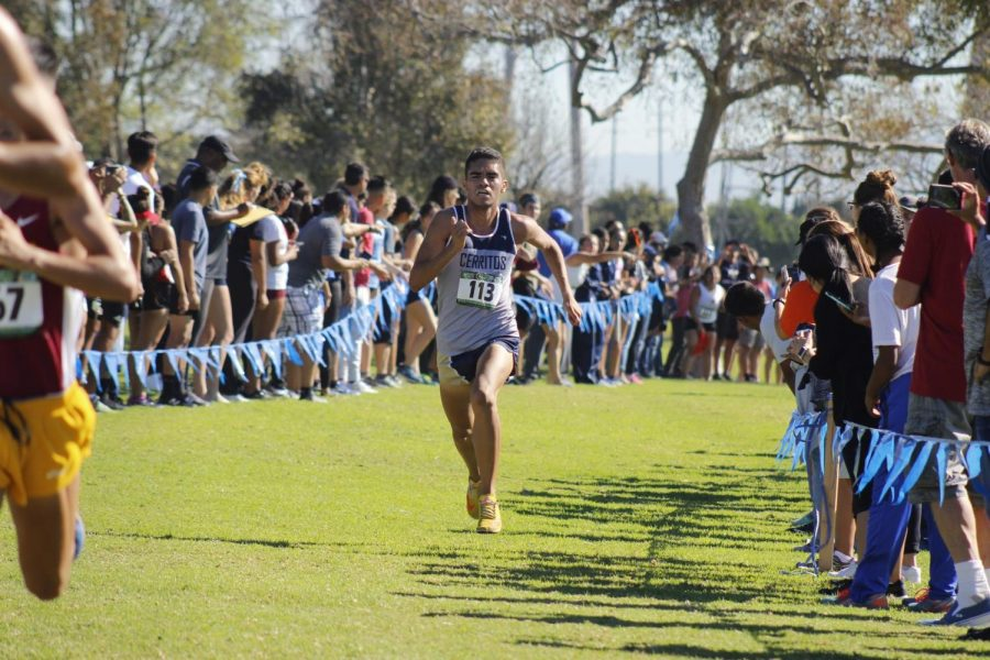 Freshman Pablo Calderon eyeing the finish line, Calderon led the Falcons to a 10th place finish in the SoCal Championships at Don Knabe Community Regional Park on Nov. 2, 2018.