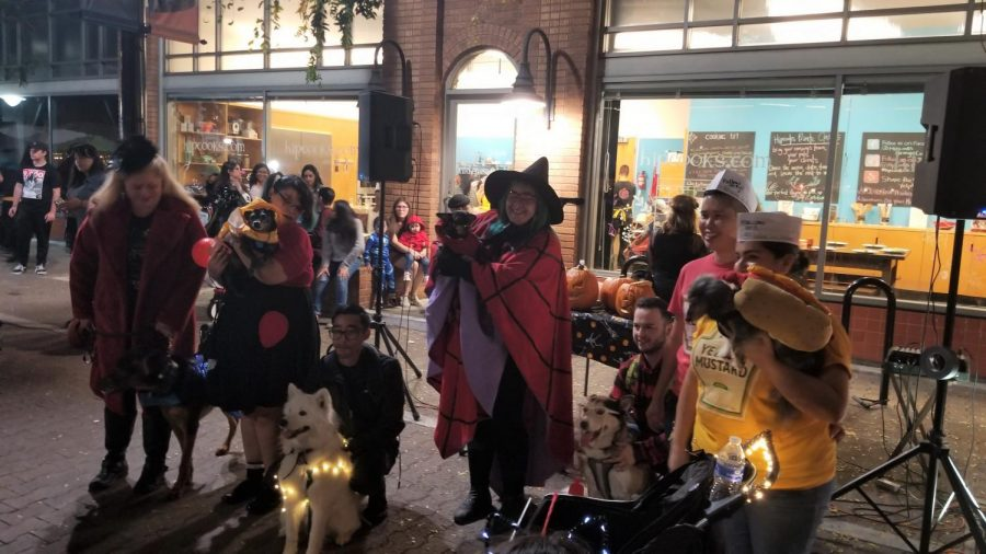 Founder of Witch Walk, Hype Priestess and the costume contest winners for pets come together to take a photo. Kids, pets and adults are welcomed to join the events' costume contests.