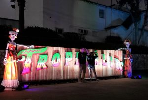 Tropicalia Festival 2019 needs improvements