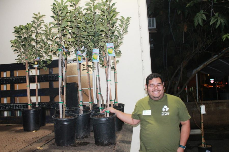 Brian Medina stading next to the fruit trees that they were giving away. This was taken at the Trinity Baptism Church on Dec. 5.