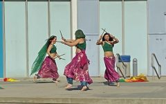 APIDAA event wows the audience with Bollywood performers