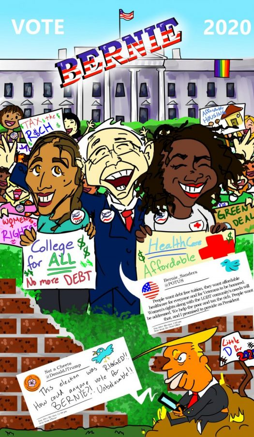 Feel the Bern: Vote Bernie 2020