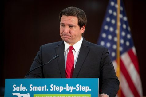 Gov. Ron DeSantis speaks during a press conference where he discussed Florida