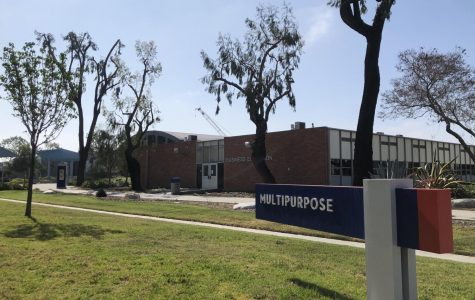 Cerritos professors reflect on the move to online-only
