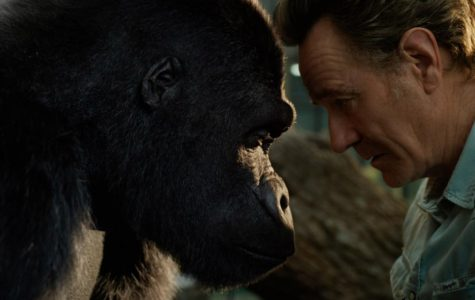 Ivan (voiced by Sam Rockwell) and Bryan Cranston as Mack in Disney's THE ONE AND ONLY IVAN, based on the award winning book by Katherine Applegate and directed by Thea Sharrock. Photo courtesy  of Disney. 2020 Disney Enterprise, Inc. All Rights Reserved.