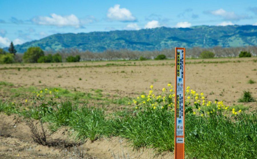 Near Russell Boulevard & Carmelo Way, near Winters, California, in Yolo County.