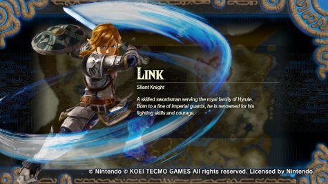 A small bio of link telling his backstory and what he's capable of. He is considered in this game as an All-around character.