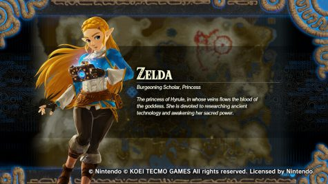 Princess Zelda's bio and introduction as a playable character that players can unlock. She is considered as a technical character with her using the Slate in multiple ways.