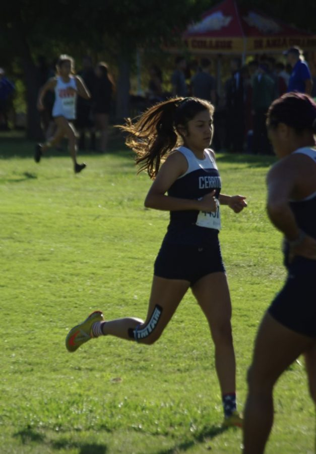 Valeria Guerra pacing herself during a cross country meet last fall. Guerra and her teammates continue to train while waiting to see if sports will return in the spring.